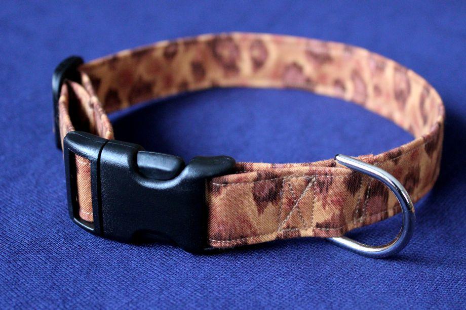 Tiara's New Accessories:  Cheetah Leash andCollar